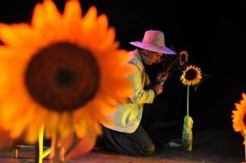Vincent - um solo de amor